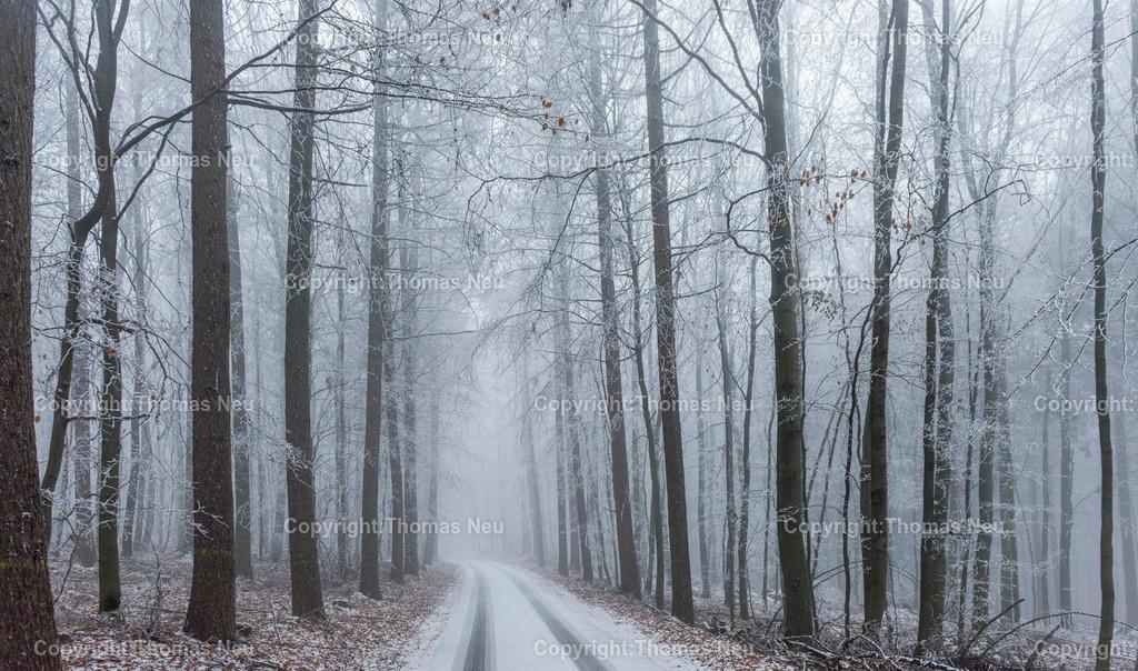 Wald_Lautertal-2 | Lautertal,Wald Schannenbach, Winter, Nebel, Schmuckbild, Bild: Thomas Neu