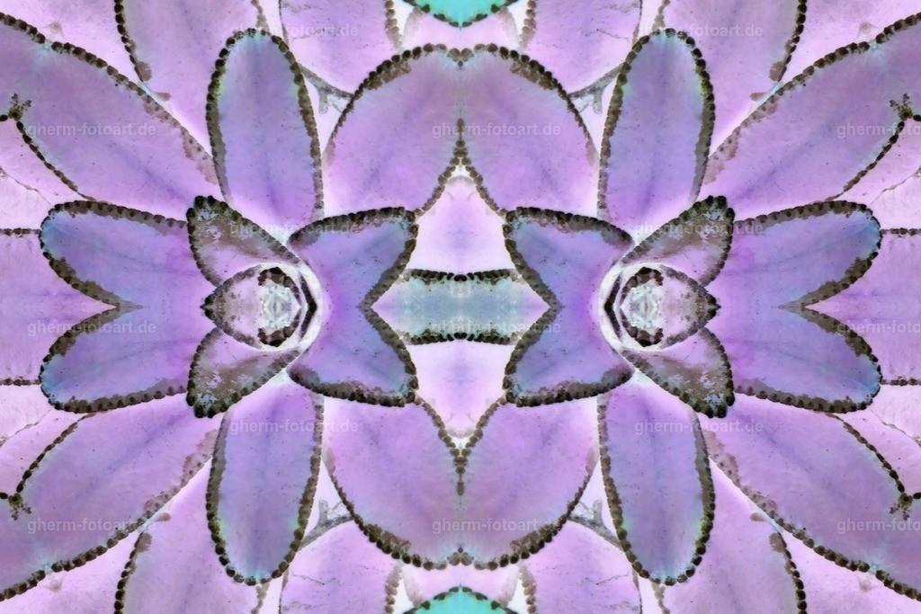 P1130154-LR-thebiginverter-LR-ausgefleckt-kaleidoskop