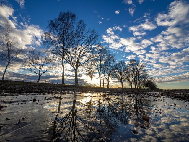 Celle (62) | exlusive Natur- Landschafts- und Makrofotografie aus Celle