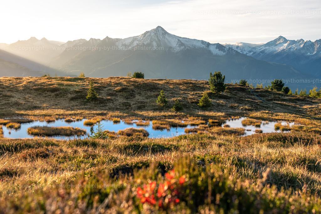 Herbst Schwendberg Tuxer Alpen 7