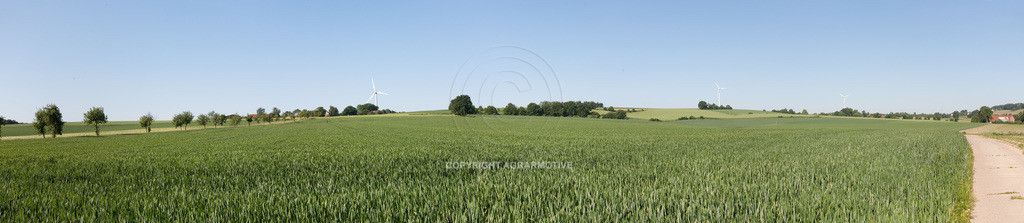 20090530-IMG_2116_panorama   Landschaftspanorama mit Getreidefeldern - AGRARMOTIVE