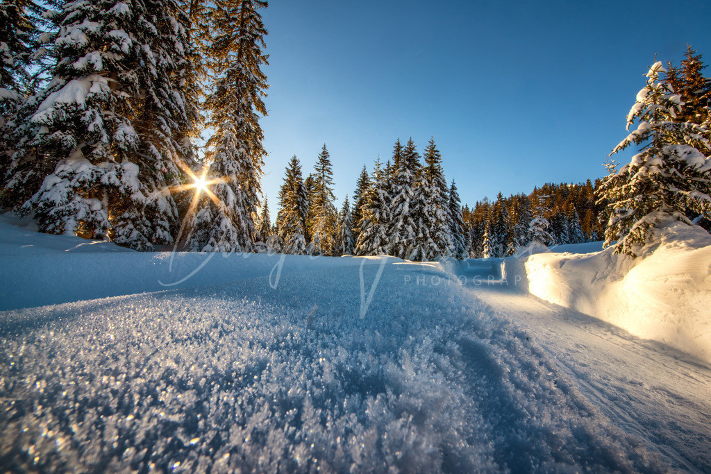 Seefeld | Winter in Seefeld