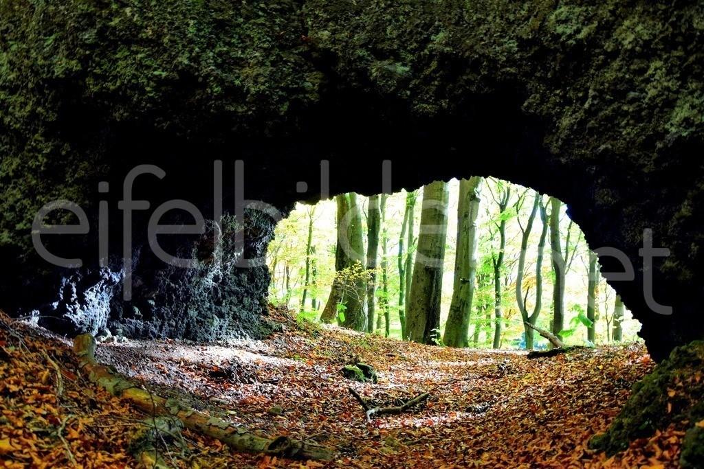 Herbst am Ernstberg   Vulkaneifel, , an den Ernstberg Höhlen