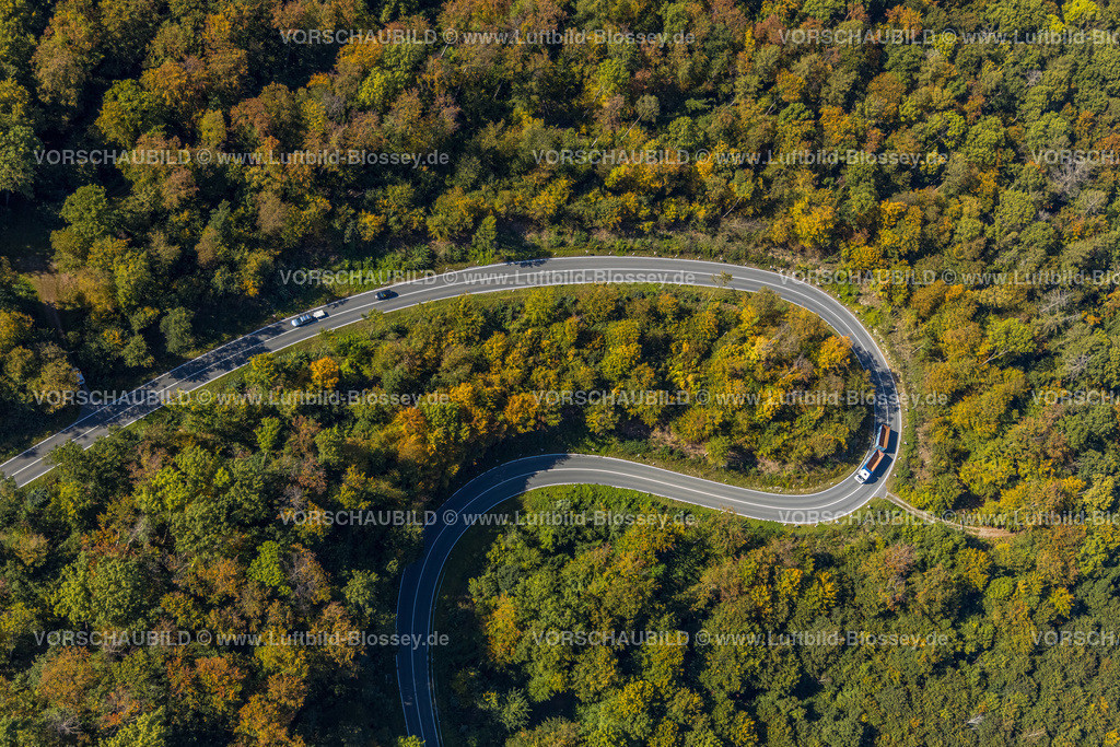 Beverungen200911480Jakobsberg_L838 | Luftbild, Serpentinenstraße im Waldgebiet, nördlich von Jakobsberg, Beverungen, Ostwestfalen-Lippe, Nordrhein-Westfalen, Deutschland