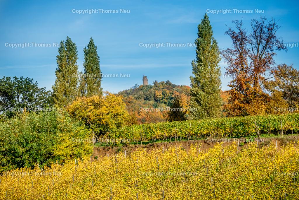 Herbst_Schloss_Auerbach_2 | Bensheim,Fuerstenlager,Schmuckbild, Schloss Auerbach, Herbst, goldener Oktober,  Bild: Thomas Neu