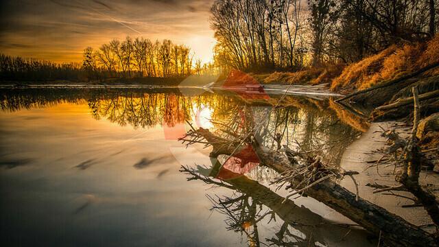 Sunset an der Donau   Kaindlau bei Mitterkirchen
