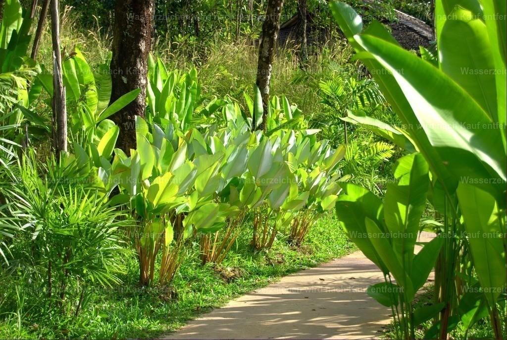 Koh Yao Noi - Thailand   Koh Yao Noi - ein ruhiges, charmantes und kleines Paradies in Thailand