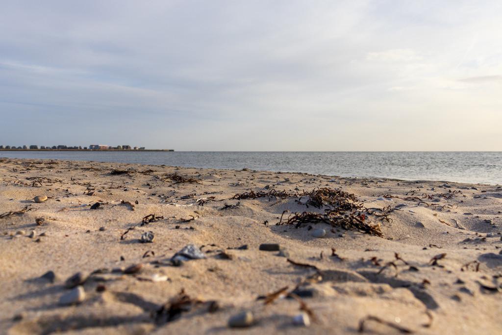 Strand in Weidefeld | Strand in Weidefeld im Sommer