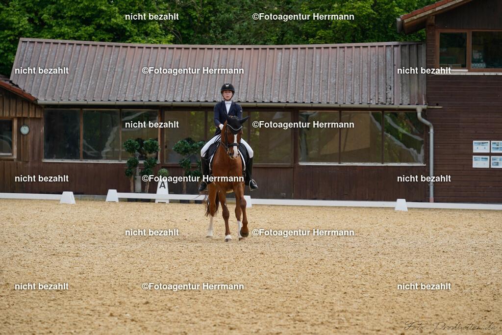 L_Foto-Production_Giesenbach2019_Starter113-9_Leonie-Ponnier_De-Niros-Gold