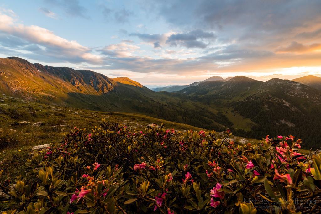 Sonnenaufgang in den Nockbergen | Sonnenuntergang in den Nockbergen an der Nockalm Straße mit blühendem Almrausch