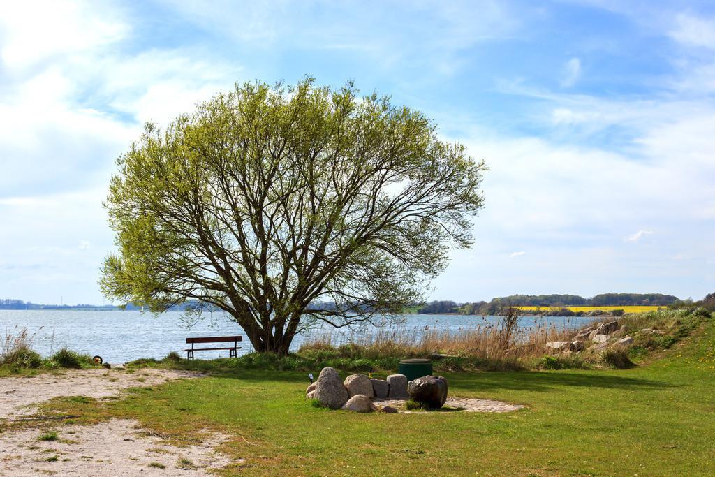 Arnis an der Schlei | Frühling in Arnis an der Schlei