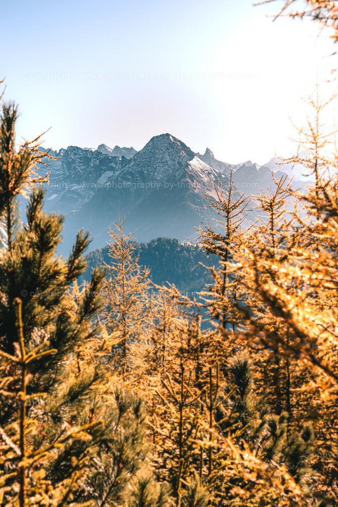 Blick zum Tristner in den Zillertaler Alpen