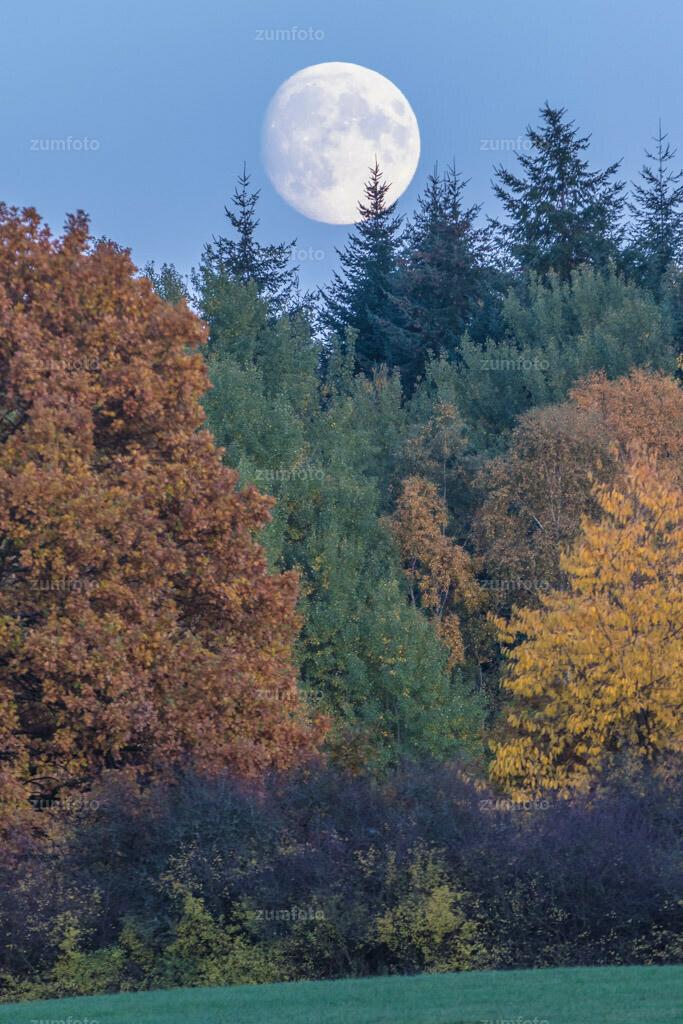 0-151025_163824-7085 | Dateigröße 5472 x 3648 Pixel Mondaufgang über einem Mischwald
