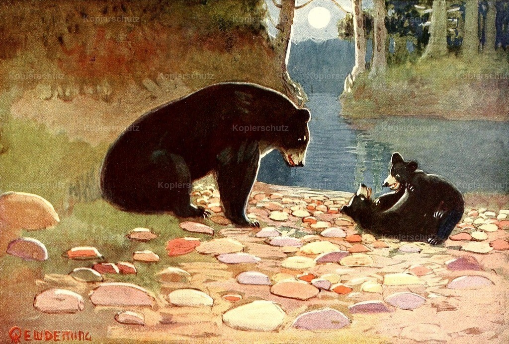 Deming_ E.W. (1860-1942) - American Animal Life 1916 - Black Bear