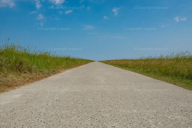 Gerader Weg durchs Feld   Ein Weg geradeaus zum Horizont durch ein Feld.