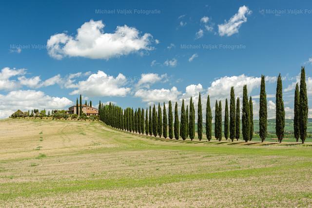 Landhaus in der Toskana | Das Landhaus Poggio Covili mit der charakteristischen Zypressenalle befindet sich ein paar Kilometer südlich von San Quirico d'Orcia im Herzen der Toskana.