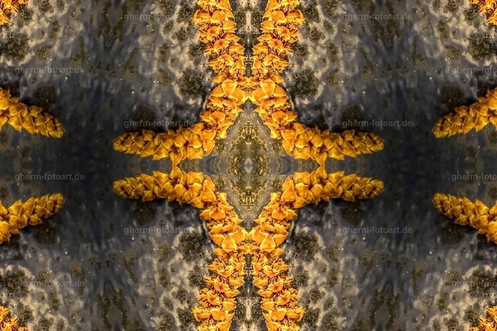 P1130152-LR-tobacco-korr-2 (2)-kaleidoskop-random