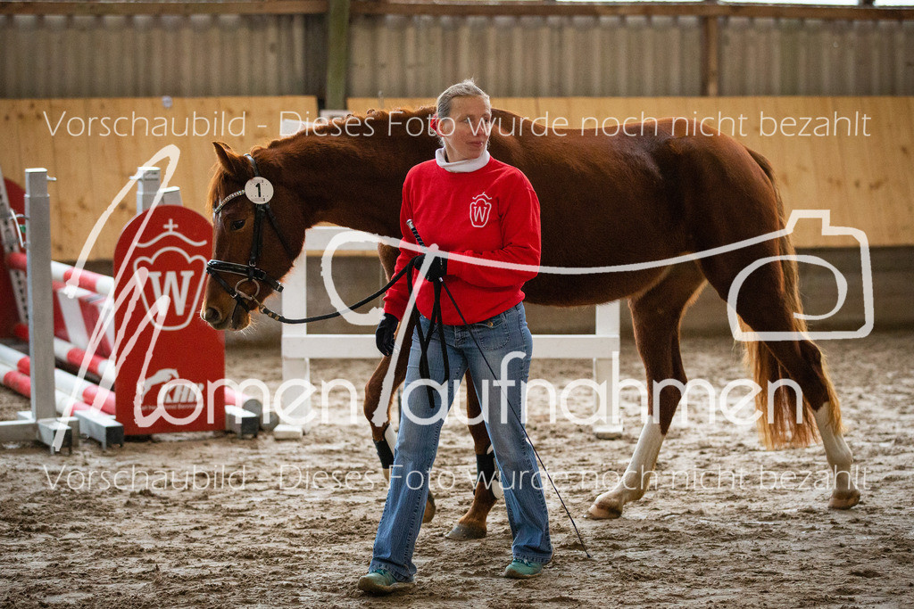 Freispringen-Pony-3j-01