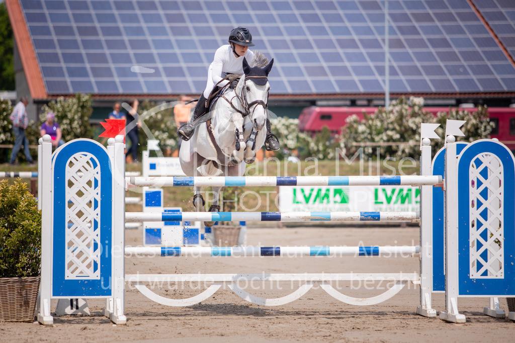 190524_LüPfSpTa_S_-Spr-406 | Pferdesporttage Herford 2019 Springprüfung Kl. S*