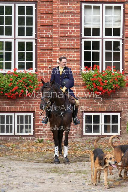 Jagd Knoop 216995_Marina Hewig