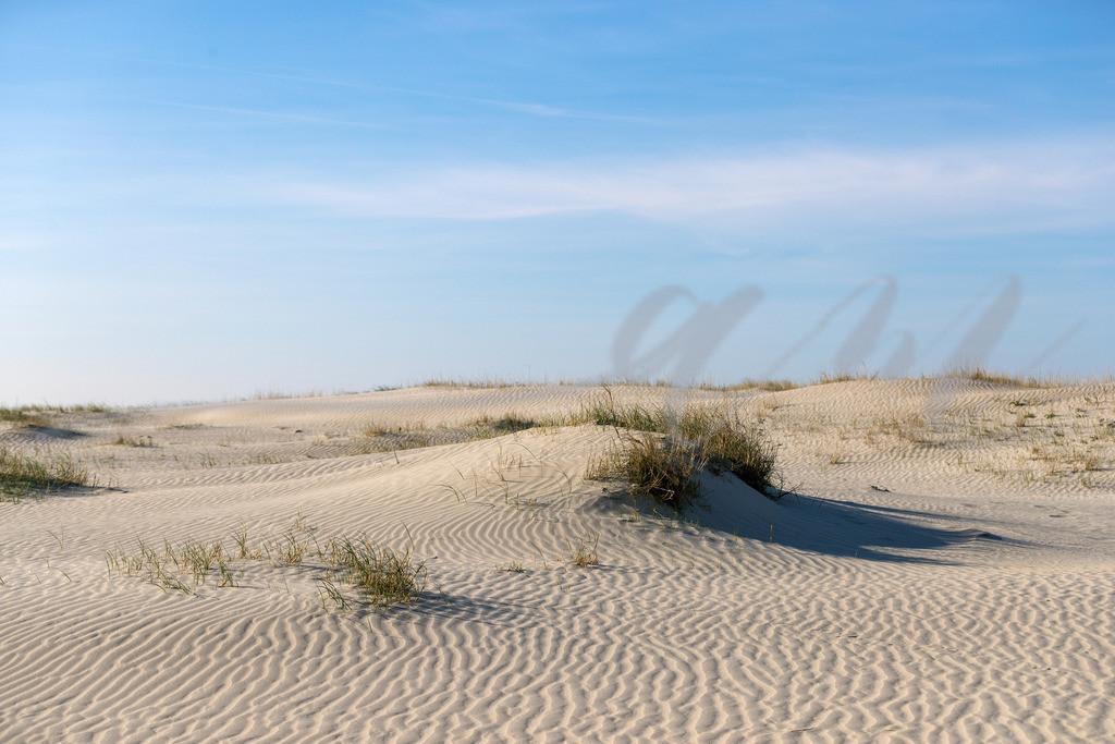 Dünenlandschaft | Unberührte Dünen unter blauem Himmel