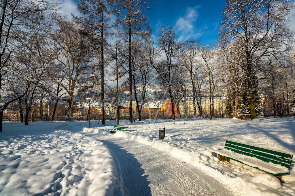 Englischer Garten | Winter in Innsbruck
