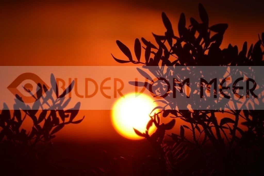 Bilder Sonnenuntergang am Meer | Sonnenuntergang in El Galan