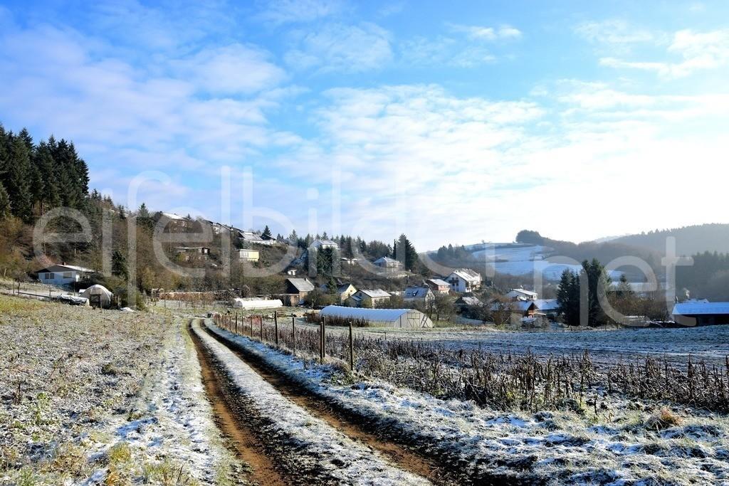 Daun Weiersbach im Winter | kleines Eifeldorf in der Vulkaneifel
