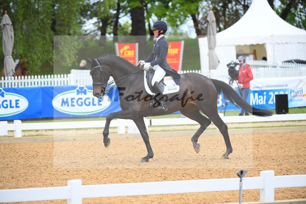 Langehanenberg_Straight Horse Ascenzione_10214103