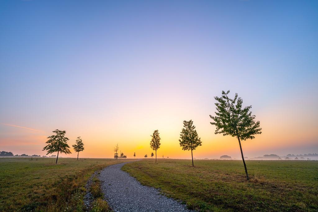 Sonnenaufgang am Findlingsgarten | Sonnenaufgang am Findlingsgarten am Obersee in Bielefeld