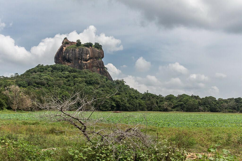 Sigiriya Felsen in Sri Lanka