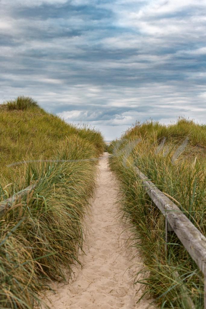 Weg zum Strand in St. Peter-Ording | Hier geht's zum Hundestrand