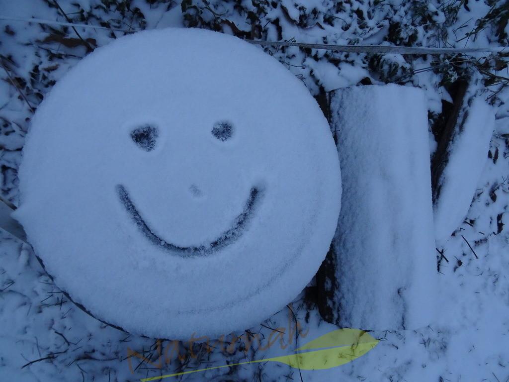 Smily on ice 1