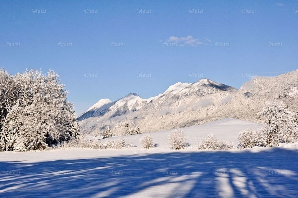 Winter-Schnee-Feb13_008_1k2