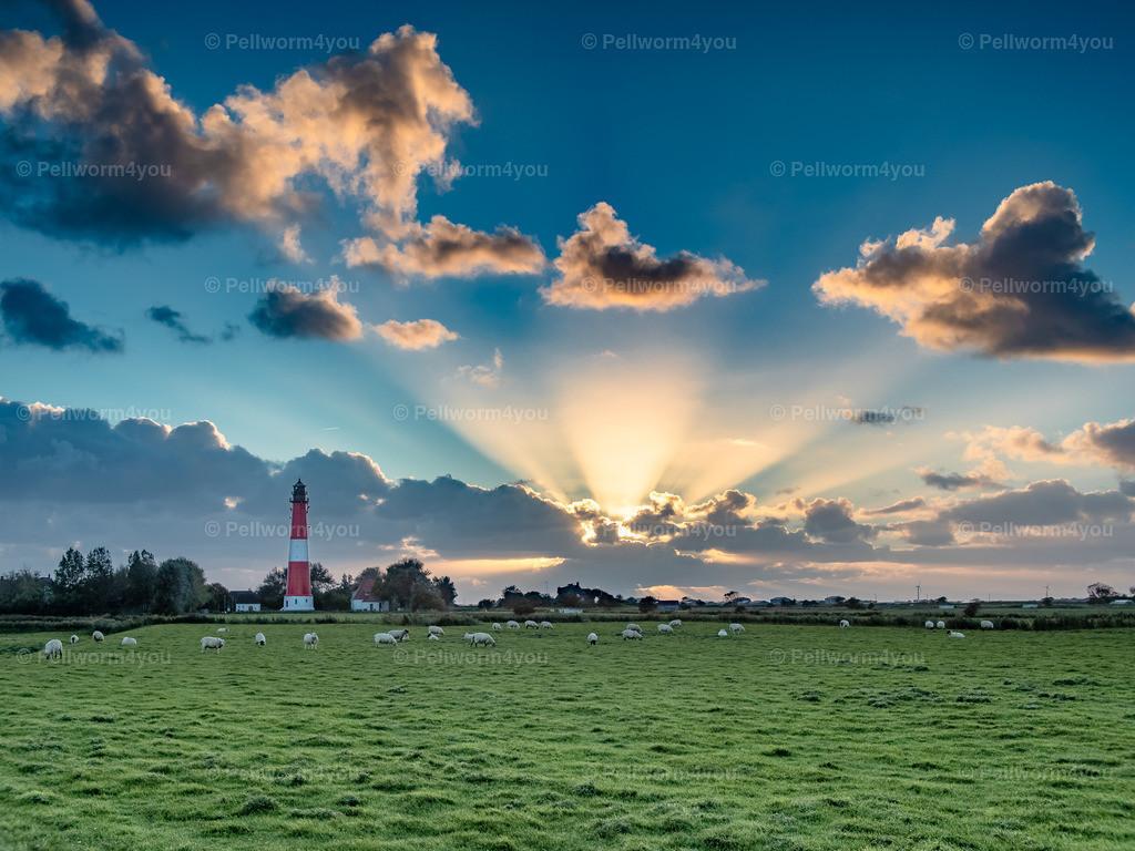 Ein Tag geht zu Ende am Pellwormer Leuchtturm