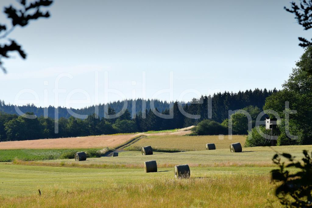 Eifelheu / Heuernte | fotografiert in Daun Weiersbach (Vulkaneifel)