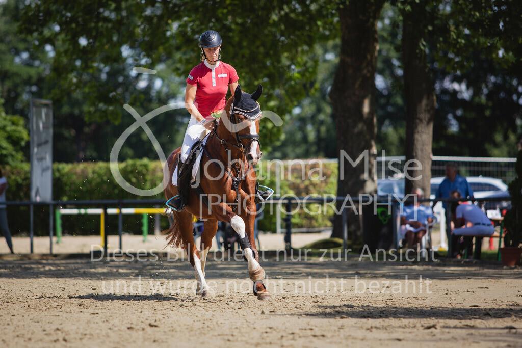 200819_Delbrück_Sprpf-A_2_1-274 | Delbrück Masters 2020 Springpferdeprüfung Kl. A** 4-6jährige Pferde