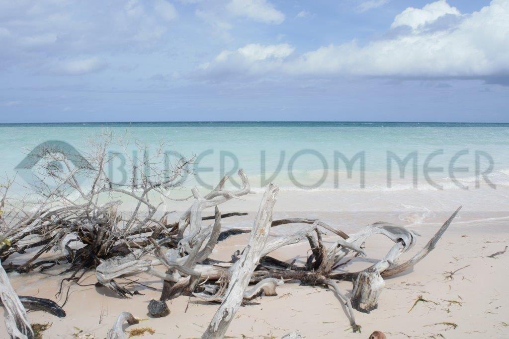Fotoausstellung Bilder vom Meer   unberührter Strand in Kuba
