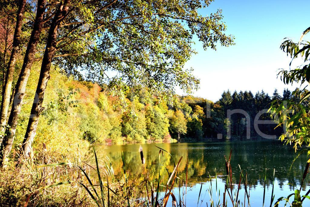 Goldener Oktober am Holzmaar | fotografiert am Holzmaar in der Vulkaneifel