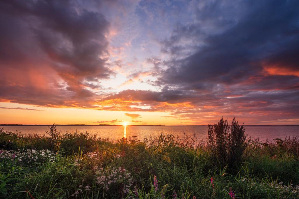 Vivid Anglia Skies   Ein toller Sonnenuntergang über der Küste Nordangelns