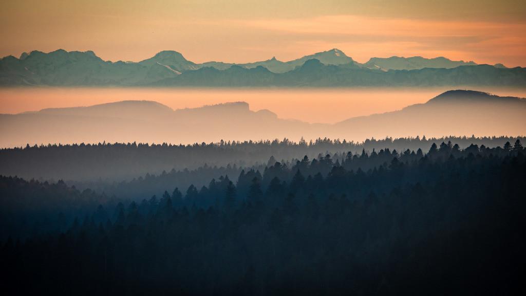Alpenblick im Südschwarzwald | Blick vom Ibacher Friedenskreuz auf die Alpenkette im herbstlichen Abendlicht