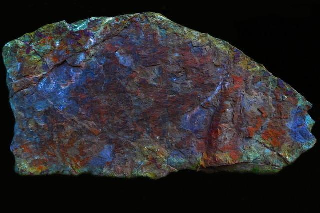 Steingrau | Einmal beachtet werden