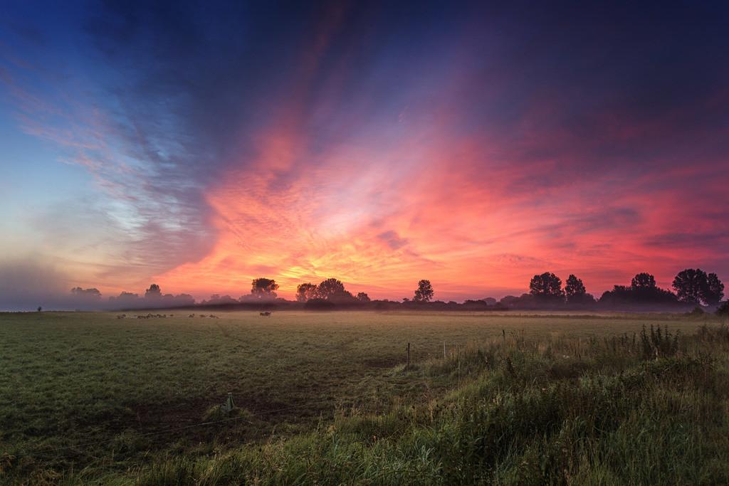 Morgenrot in den Hammewiesen   Spektakuläres Morgenrot in den Hammewiesen.