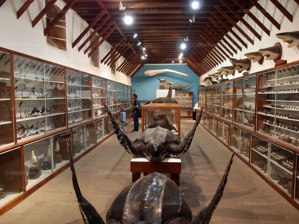 P5185877 | Museo Insular in Santa Cruz de La Palma