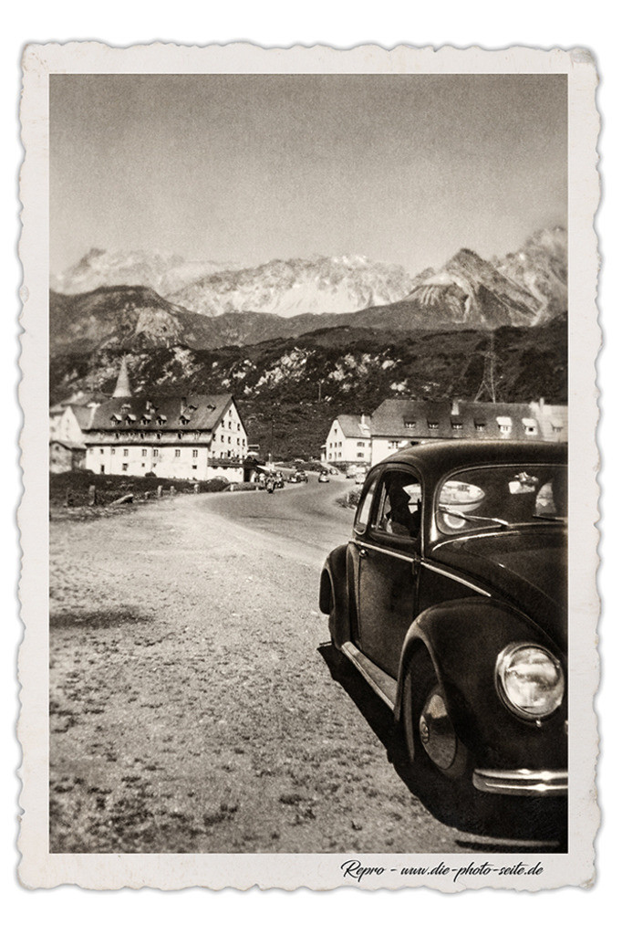 Käfer in den Alpen
