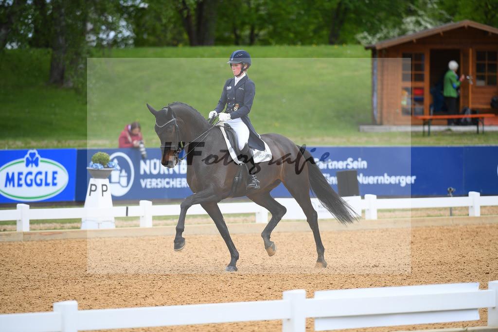 Langehanenberg_Straight Horse Ascenzione_10214099