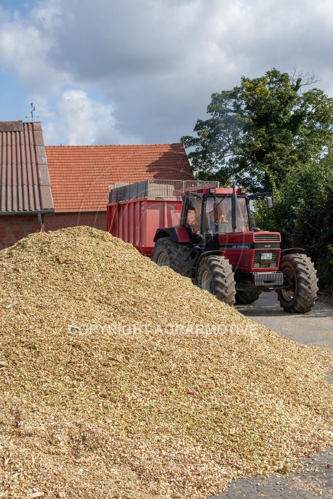 20080914-IMG_9092 | Silomais wird gehäckselt - AGRARFOTO Bilder aus der Landwirtschaft