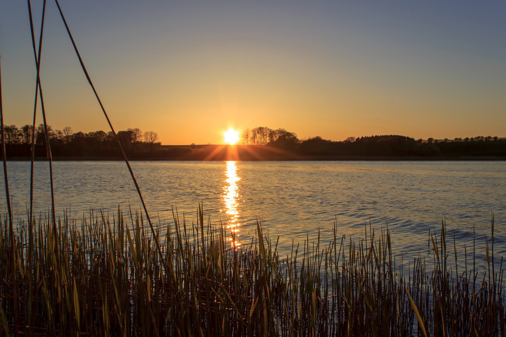 Sonnenuntergang an der Schlei | Sonnenuntergang in Bohnert an der Schlei
