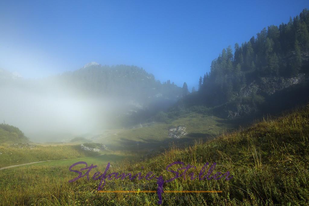 Morgentlicher Nebel    Sonne vertreibt den morgendlichen Nebel in den Bergen