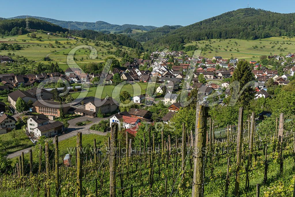 Dorfansicht, Ziefen (BL) | Dorfansicht mit Holzenberg und Vogelberg im Hintergrund, Ziefen im Fünflibertal, Kanton Baselland.